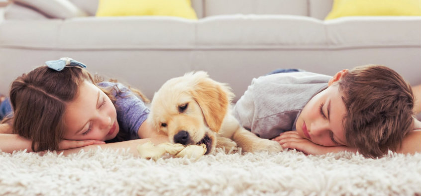 two lovely children lying on the carpet with pet dog in between them