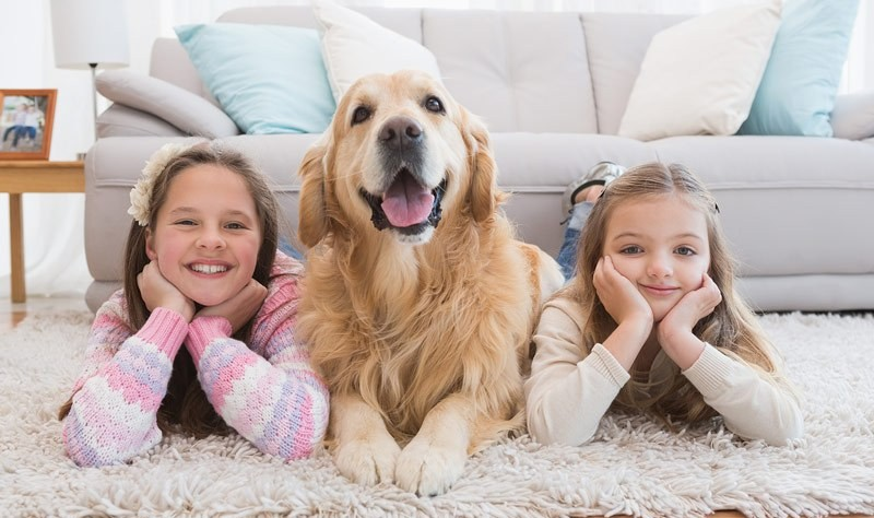 kids laying on the carpet with their dog